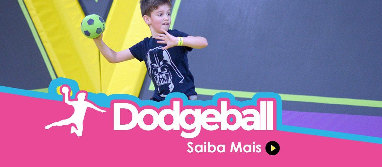 Impulso Park Dodgeball